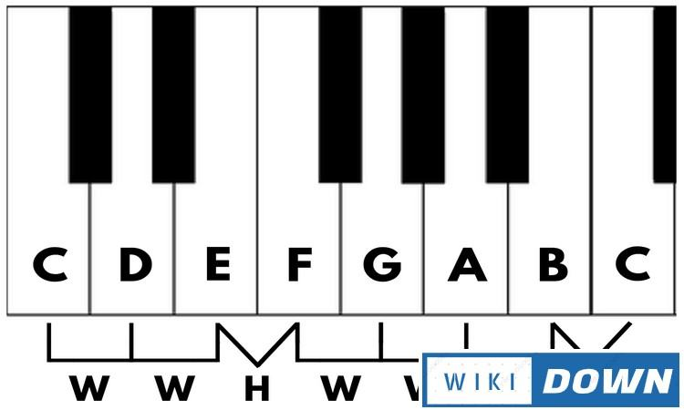 Download Music Theory Basics Link GG Drive Full Crack